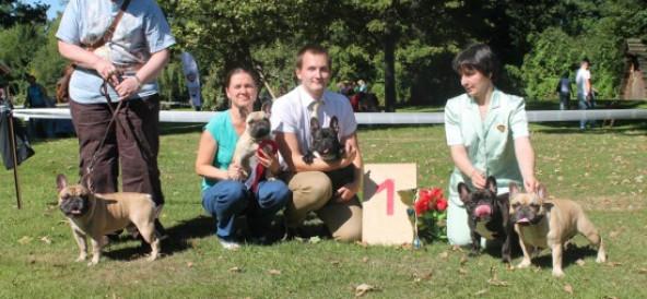 15.08.2015. The Bulldogs & Boston terrier specialty show in Riga, Latvia