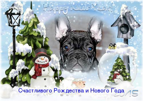 loonapix_14194255763026111833